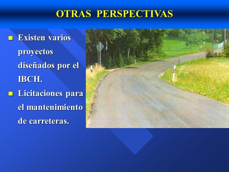 OTRAS PERSPECTIVAS Existen varios proyectos diseñados por el IBCH.