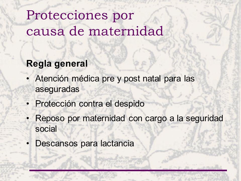 Protecciones por causa de maternidad