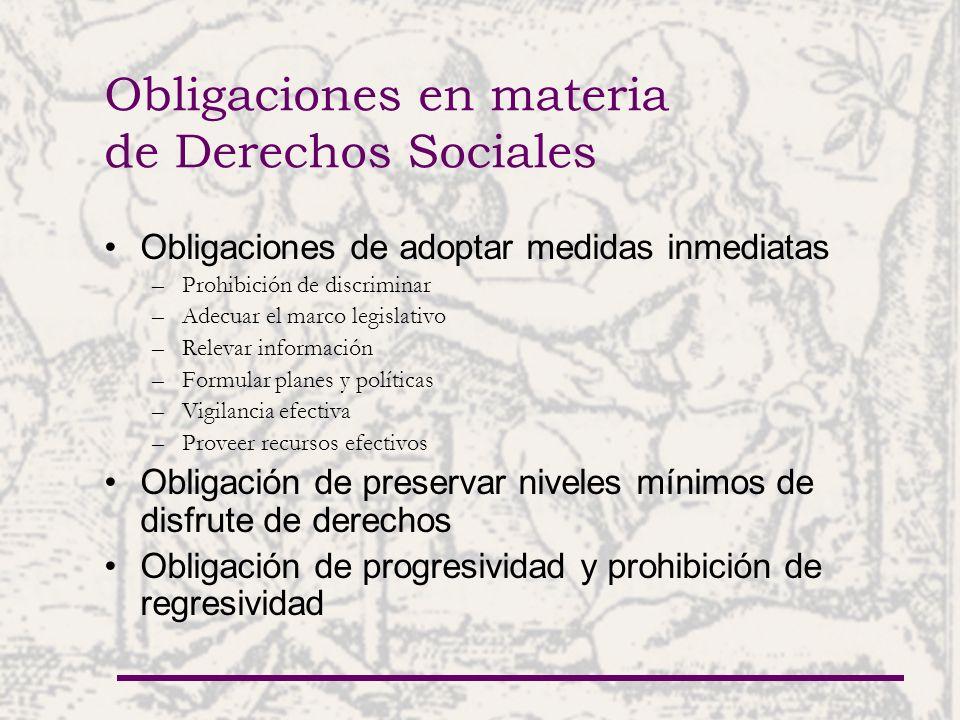 Obligaciones en materia de Derechos Sociales