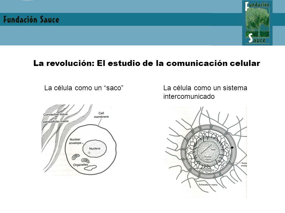 La revolución: El estudio de la comunicación celular