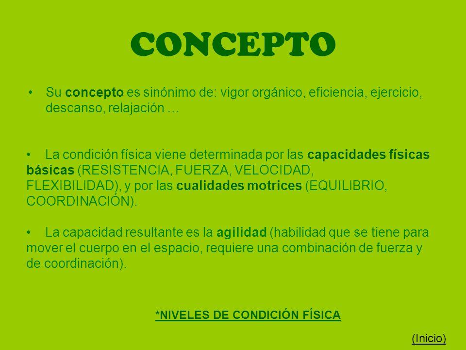 CONCEPTO Su concepto es sinónimo de: vigor orgánico, eficiencia, ejercicio, descanso, relajación …