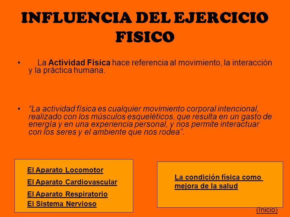 INFLUENCIA DEL EJERCICIO FISICO