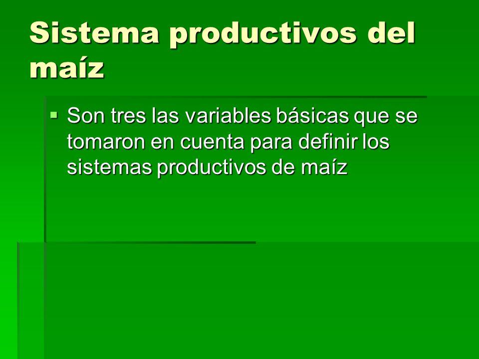 Sistema productivos del maíz