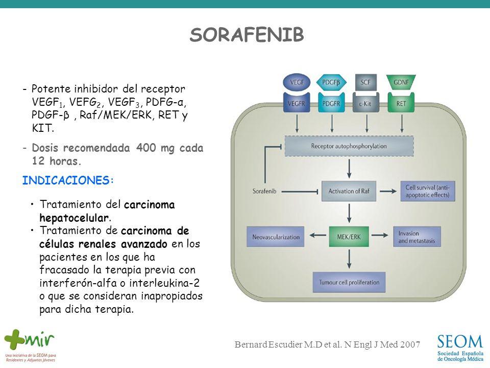 Bernard Escudier M.D et al. N Engl J Med 2007