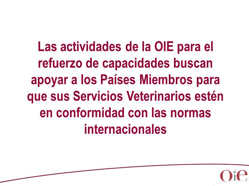 Las actividades de la OIE para el refuerzo de capacidades buscan apoyar a los Países Miembros para que sus Servicios Veterinarios estén en conformidad con las normas internacionales