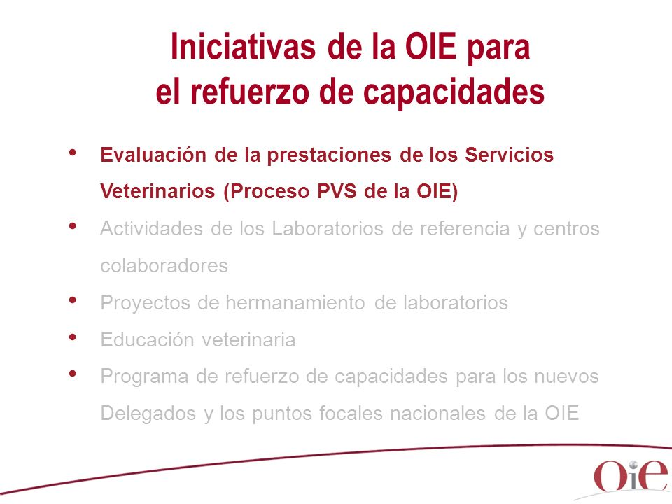 Iniciativas de la OIE para el refuerzo de capacidades