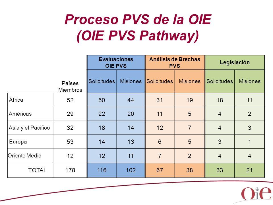 Análisis de Brechas PVS