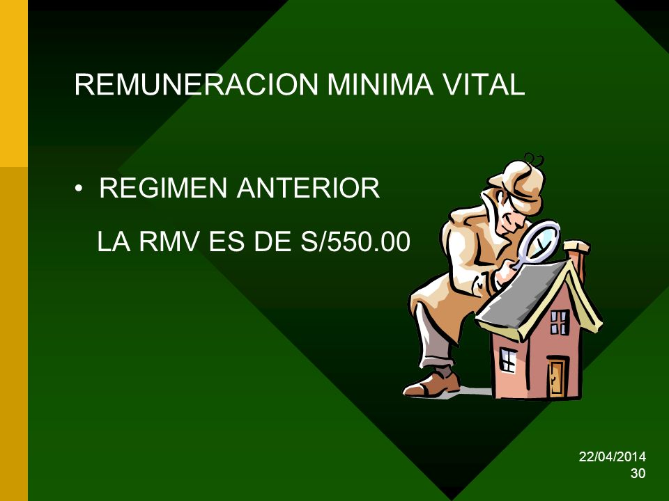 REMUNERACION MINIMA VITAL