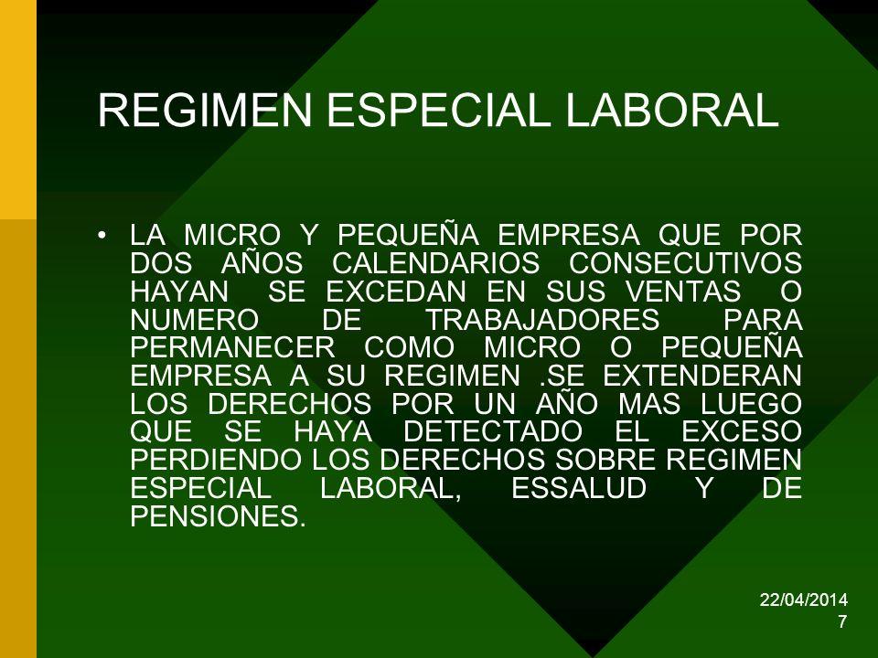 REGIMEN ESPECIAL LABORAL