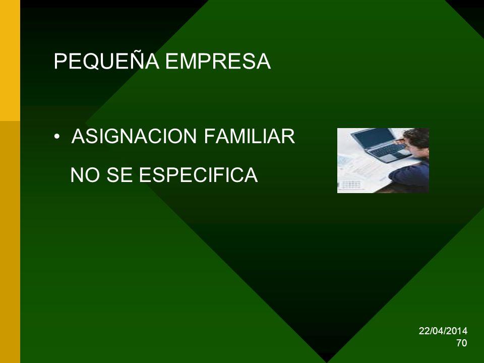 PEQUEÑA EMPRESA ASIGNACION FAMILIAR NO SE ESPECIFICA 29/03/2017