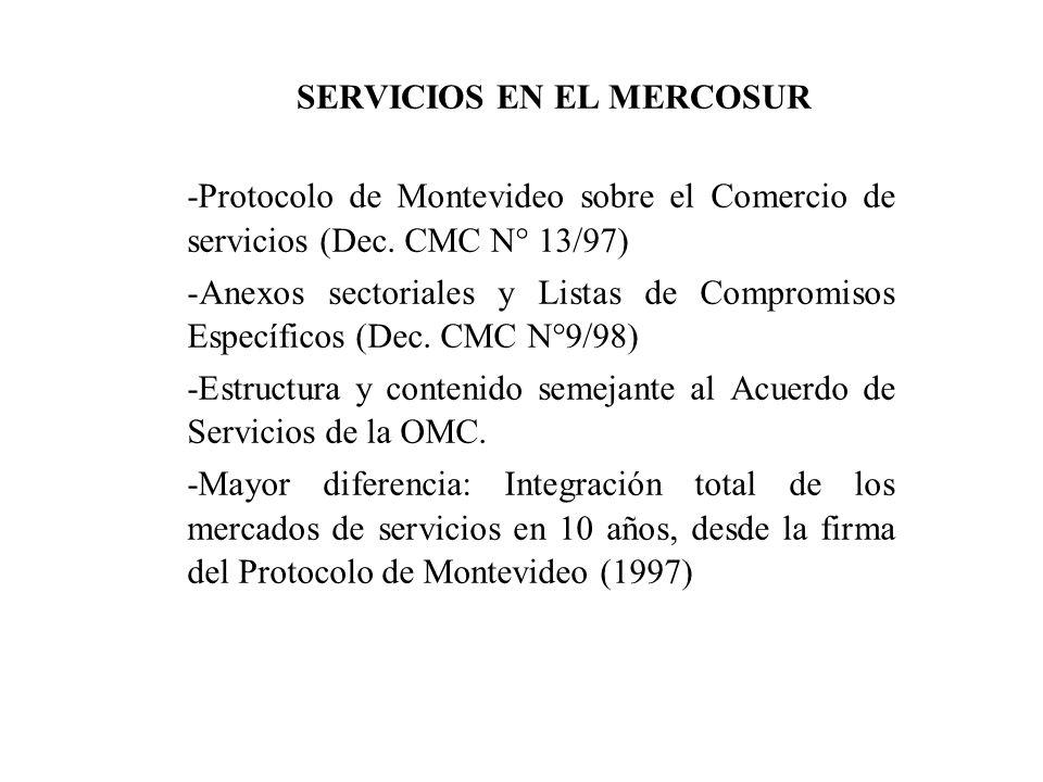SERVICIOS EN EL MERCOSUR