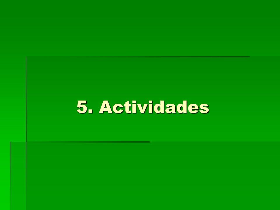 5. Actividades