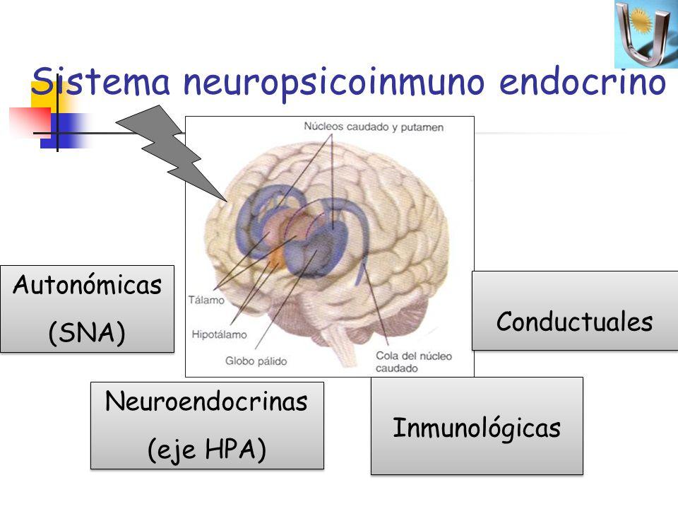 Sistema neuropsicoinmuno endocrino