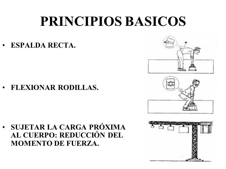 PRINCIPIOS BASICOS ESPALDA RECTA. FLEXIONAR RODILLAS.