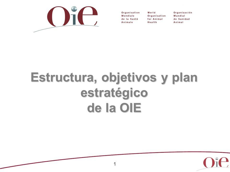 Estructura, objetivos y plan estratégico