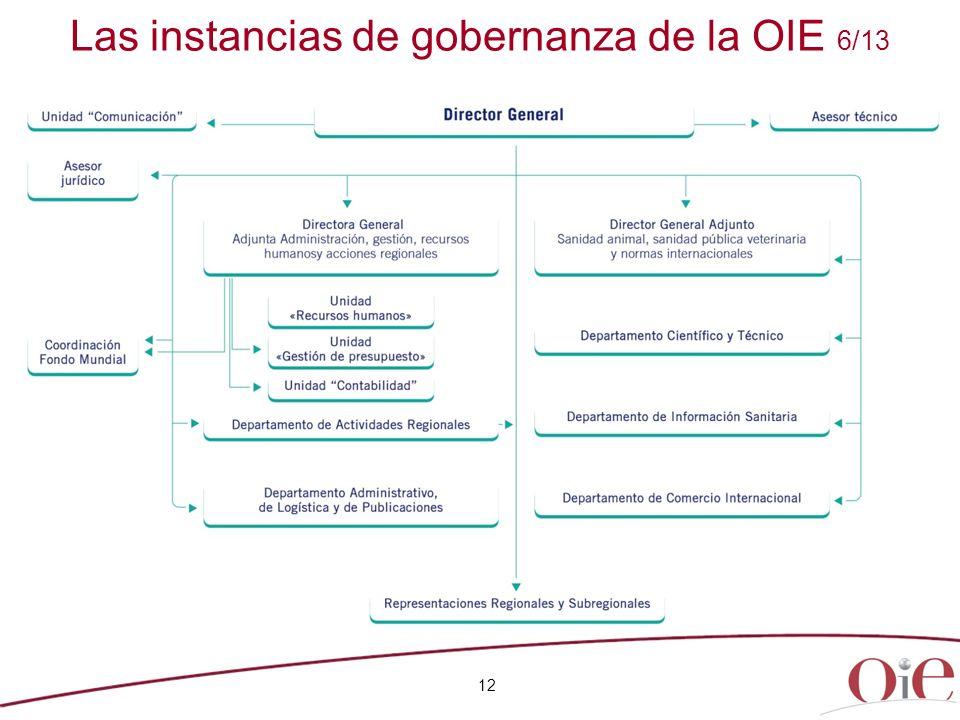 Las instancias de gobernanza de la OIE 6/13