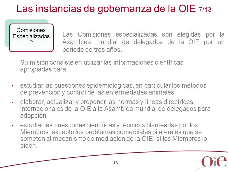 Las instancias de gobernanza de la OIE 7/13