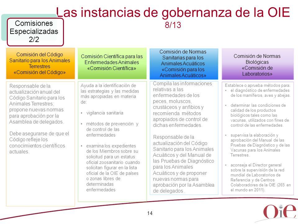 Las instancias de gobernanza de la OIE 8/13