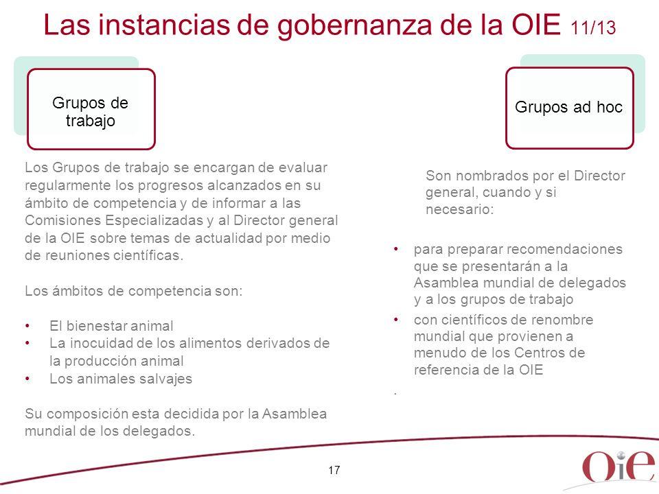 Las instancias de gobernanza de la OIE 11/13
