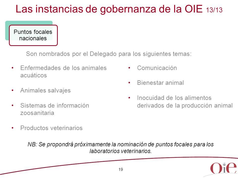 Las instancias de gobernanza de la OIE 13/13