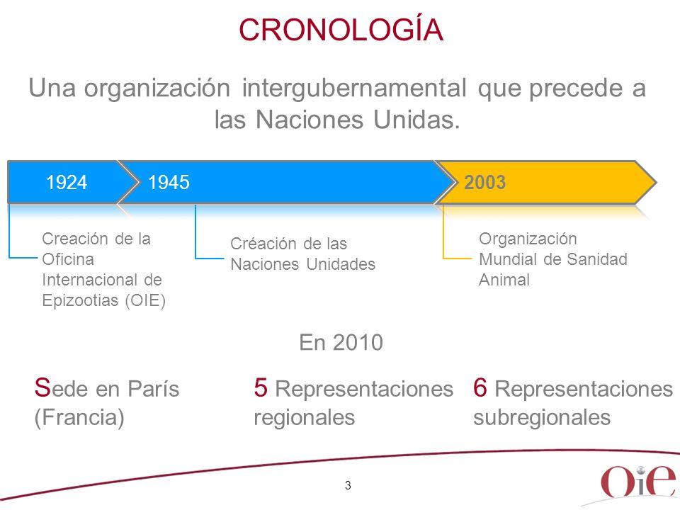 Una organización intergubernamental que precede a las Naciones Unidas.