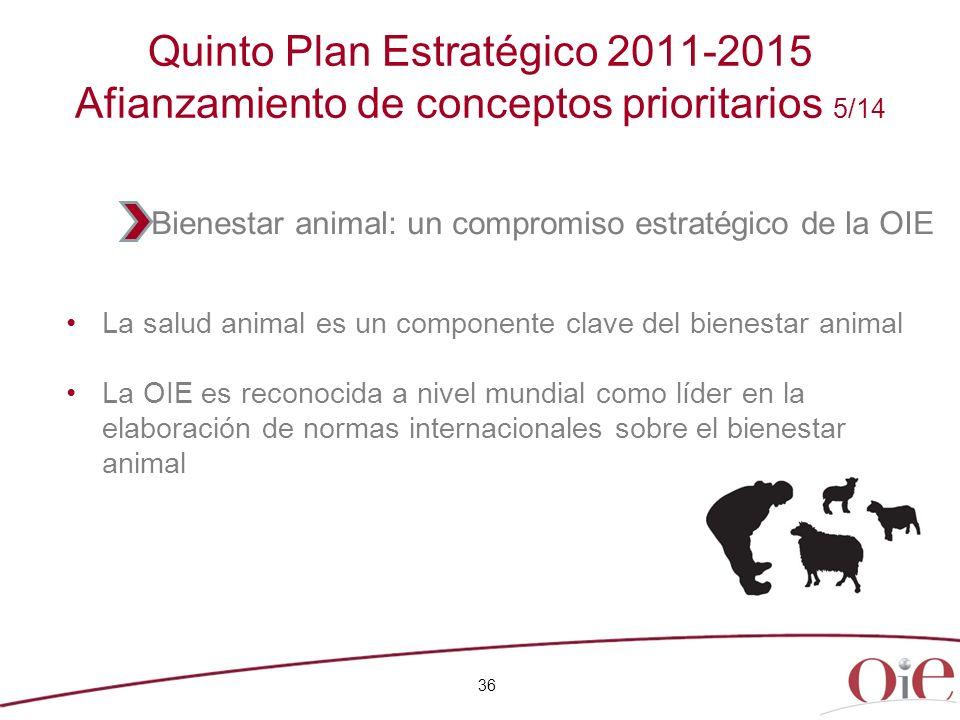 Quinto Plan Estratégico 2011-2015 Afianzamiento de conceptos prioritarios 5/14