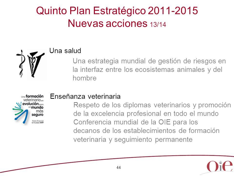 Quinto Plan Estratégico 2011-2015 Nuevas acciones 13/14
