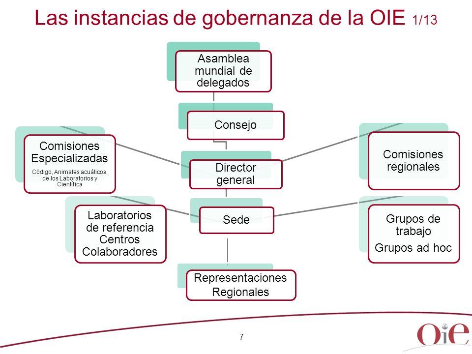 Las instancias de gobernanza de la OIE 1/13