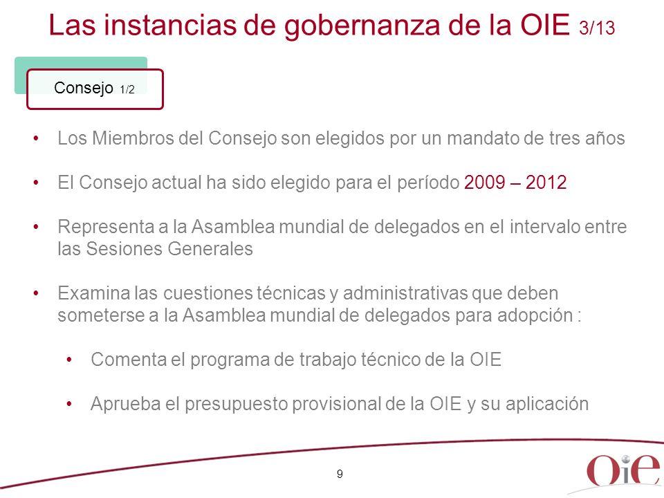 Las instancias de gobernanza de la OIE 3/13
