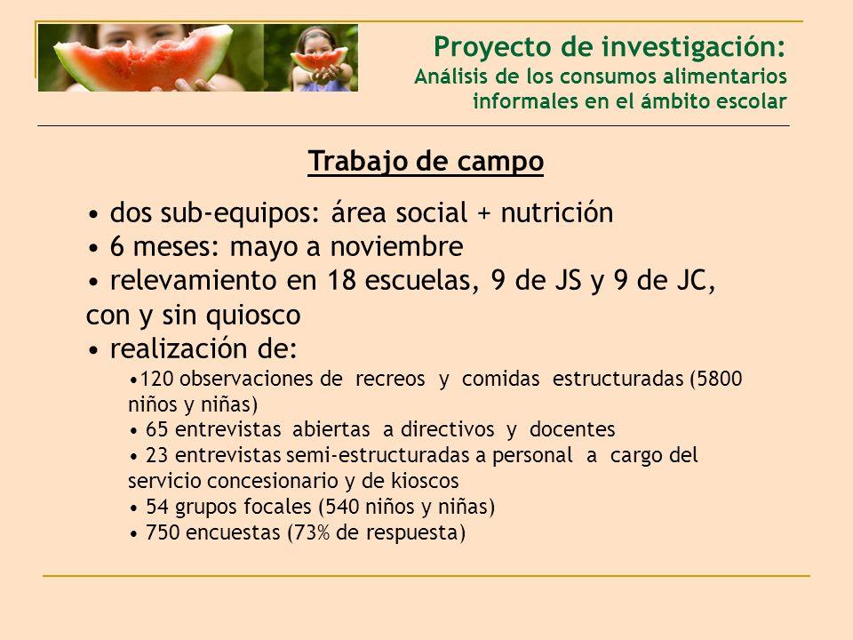 dos sub-equipos: área social + nutrición 6 meses: mayo a noviembre