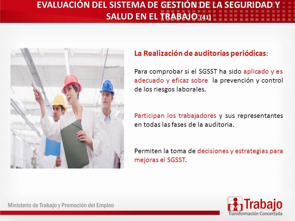 EVALUACIÓN DEL SISTEMA DE GESTIÓN DE LA SEGURIDAD Y SALUD EN EL TRABAJO (41)