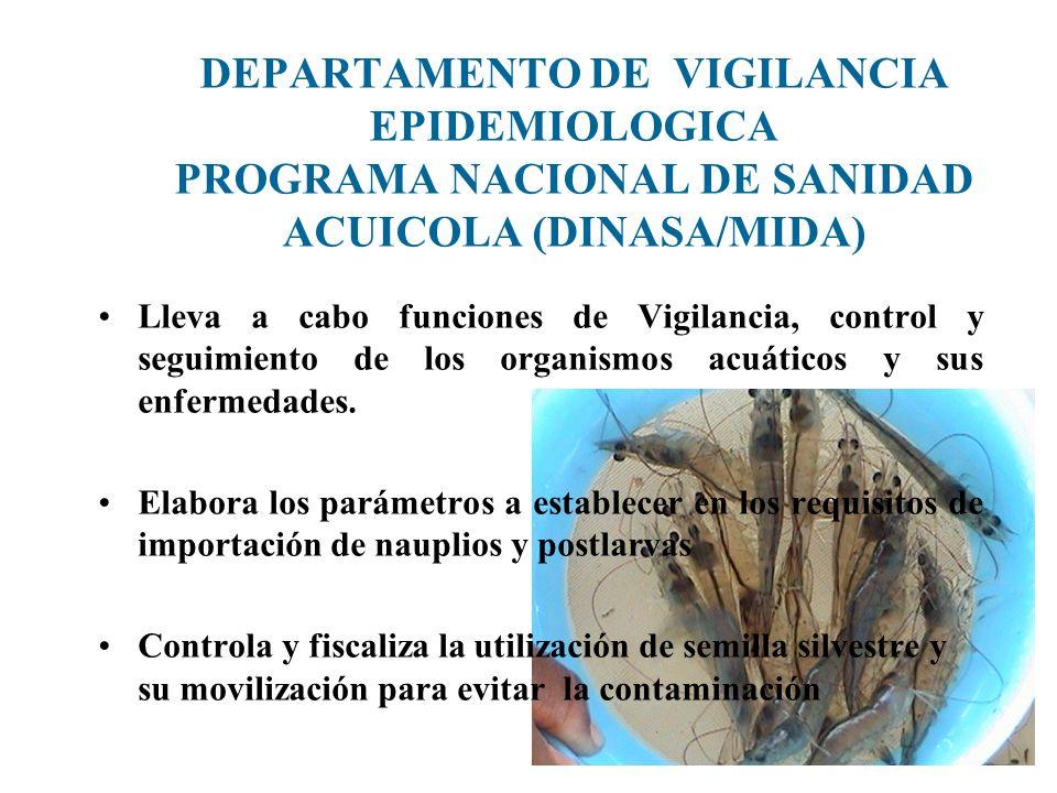 DEPARTAMENTO DE VIGILANCIA EPIDEMIOLOGICA PROGRAMA NACIONAL DE SANIDAD ACUICOLA (DINASA/MIDA)