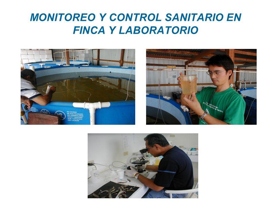 MONITOREO Y CONTROL SANITARIO EN FINCA Y LABORATORIO