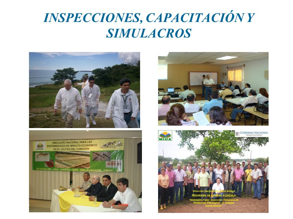 INSPECCIONES, CAPACITACIÓN Y SIMULACROS