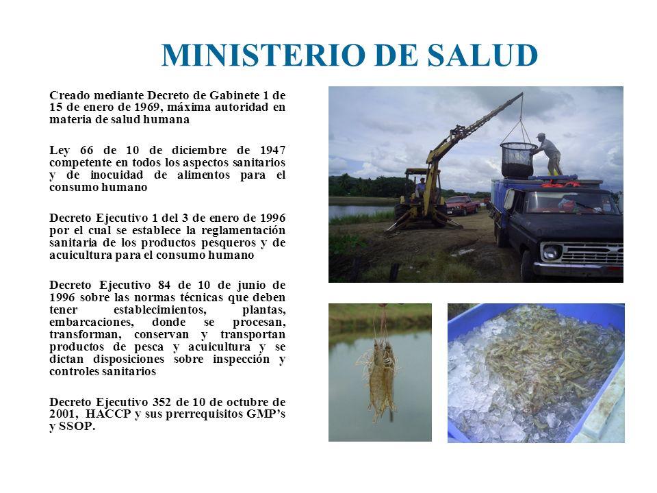 MINISTERIO DE SALUD Creado mediante Decreto de Gabinete 1 de 15 de enero de 1969, máxima autoridad en materia de salud humana.