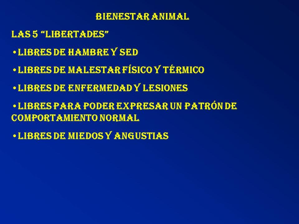 Bienestar Animal Las 5 libertades •Libres de hambre y sed. •Libres de malestar físico y térmico.