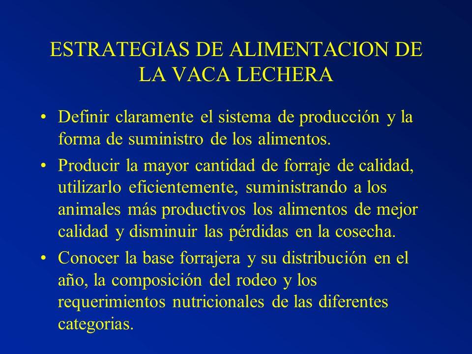 ESTRATEGIAS DE ALIMENTACION DE LA VACA LECHERA
