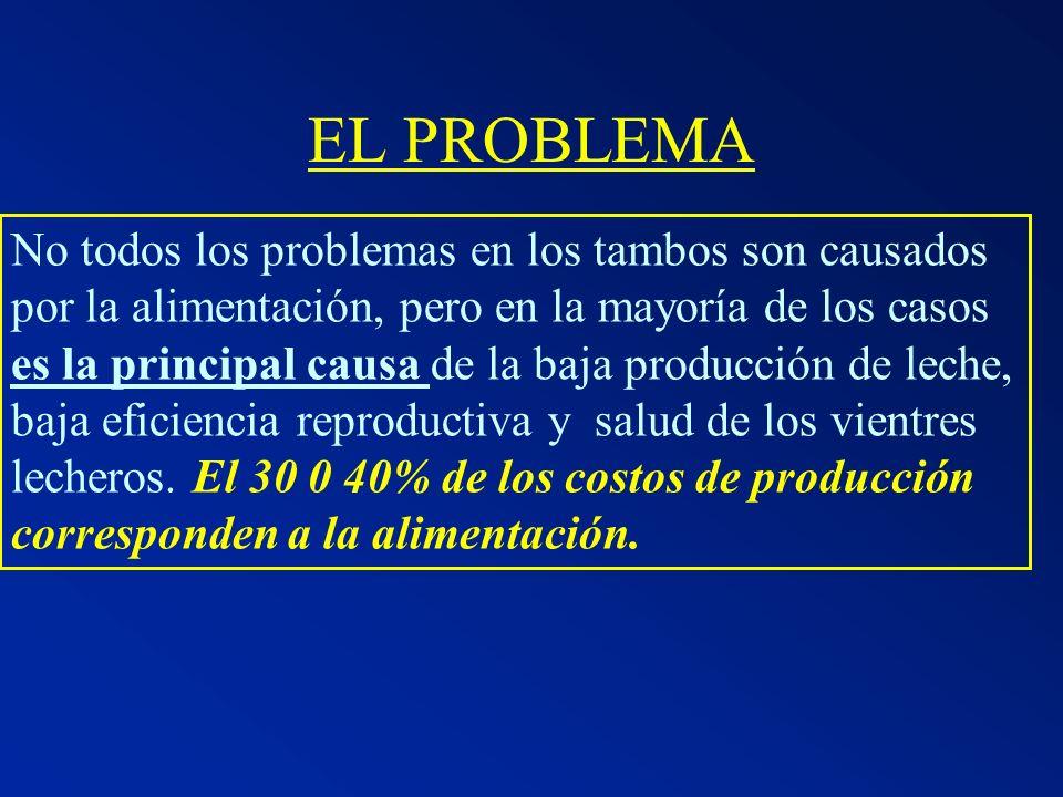 EL PROBLEMA No todos los problemas en los tambos son causados