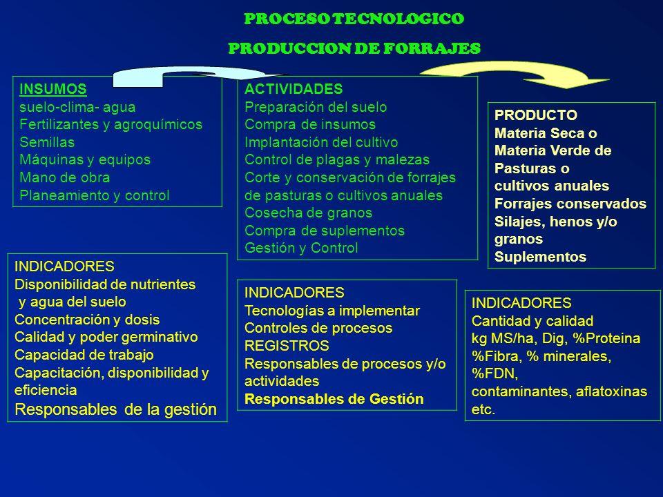 PRODUCCION DE FORRAJES