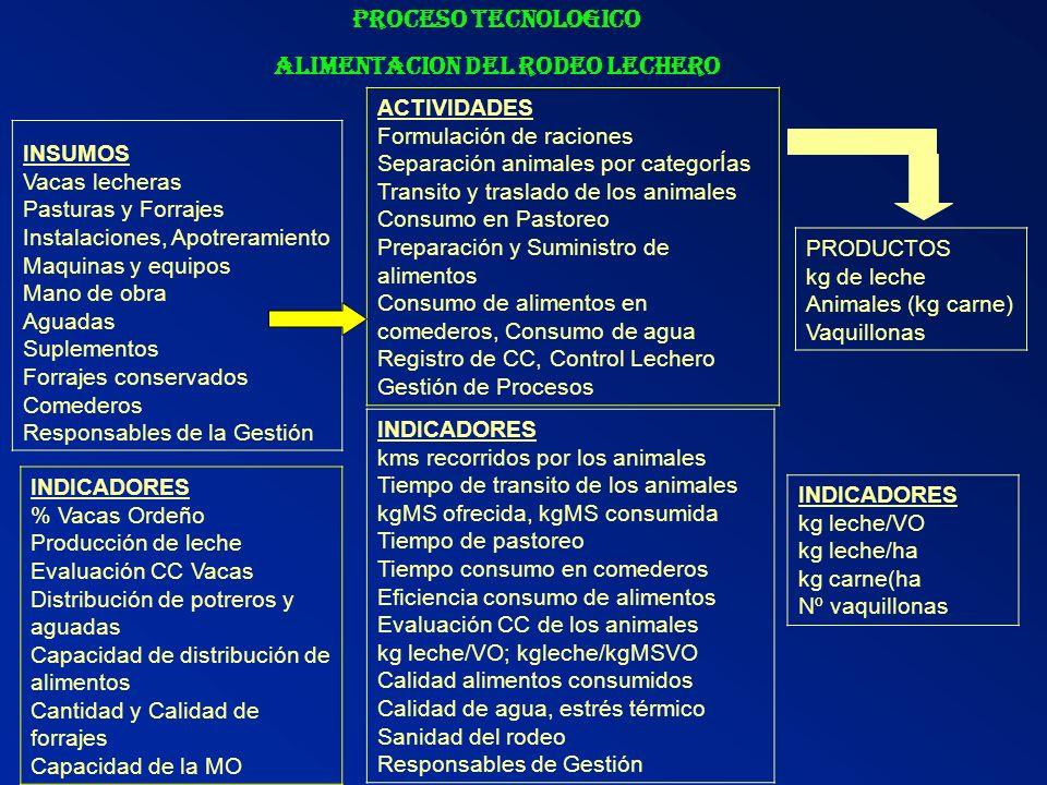 ALIMENTACION DEL RODEO LECHERO