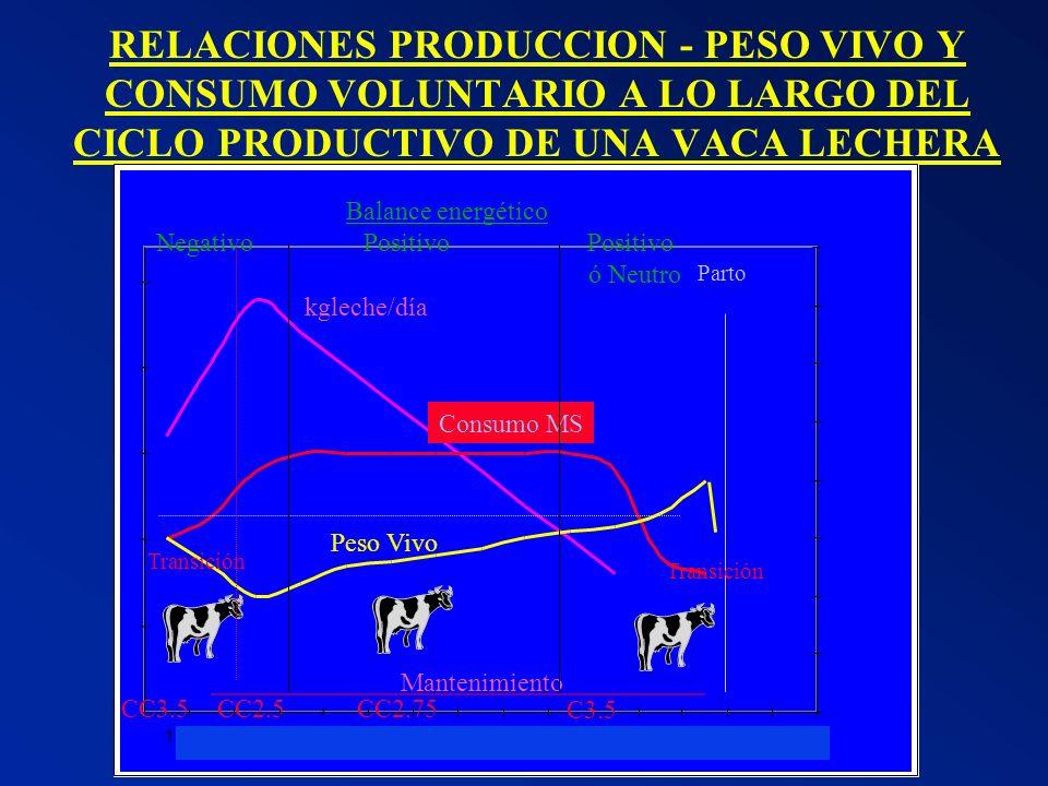 RELACIONES PRODUCCION - PESO VIVO Y CONSUMO VOLUNTARIO A LO LARGO DEL CICLO PRODUCTIVO DE UNA VACA LECHERA