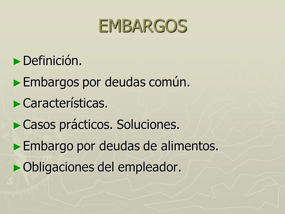 EMBARGOS Definición. Embargos por deudas común. Características.