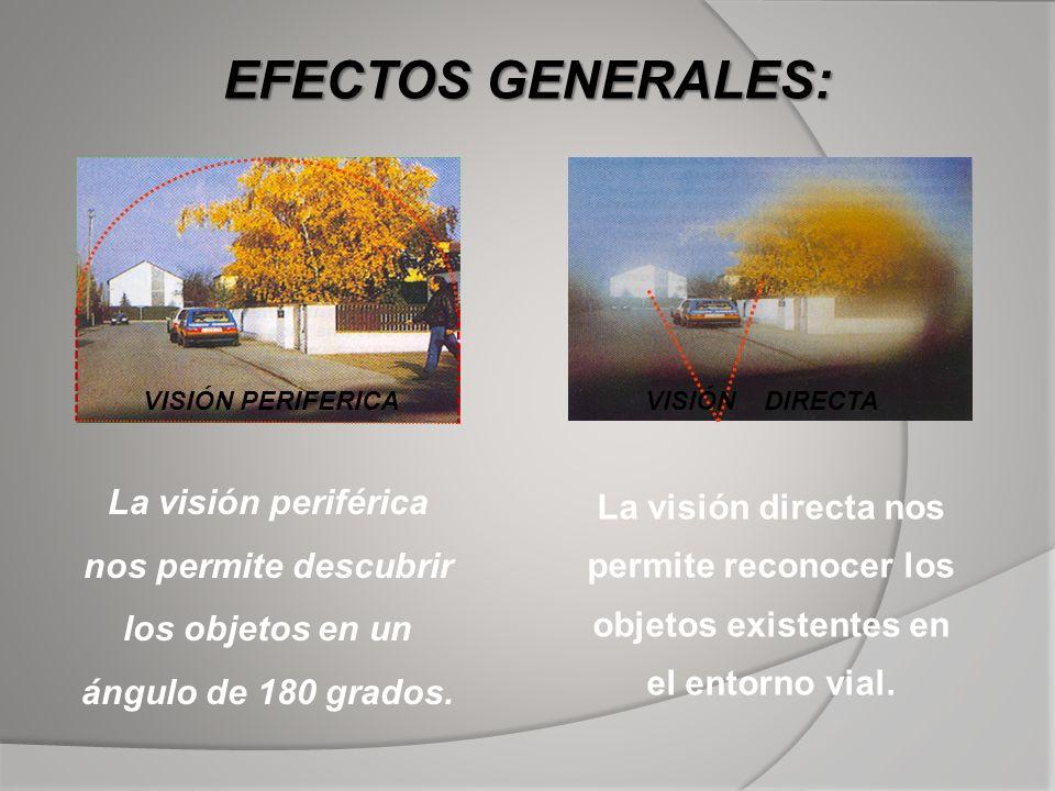 EFECTOS GENERALES: VISIÓN PERIFERICA. VISIÓN DIRECTA. La visión periférica nos permite descubrir los objetos en un ángulo de 180 grados.
