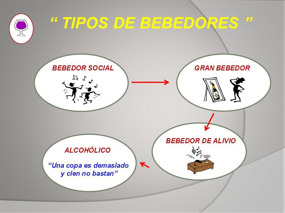 TIPOS DE BEBEDORES