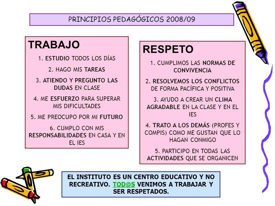TRABAJO RESPETO PRINCIPIOS PEDAGÓGICOS 2008/09