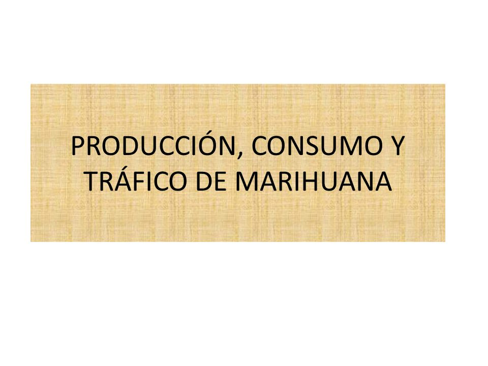 PRODUCCIÓN, CONSUMO Y TRÁFICO DE MARIHUANA