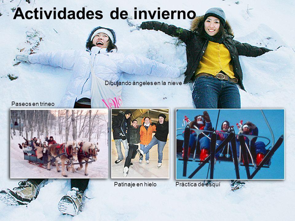 Actividades de invierno