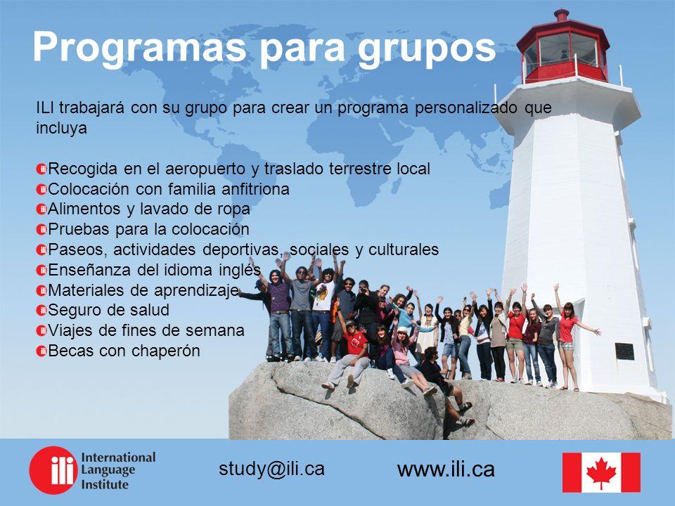 Programas para grupos ILI trabajará con su grupo para crear un programa personalizado que incluya.