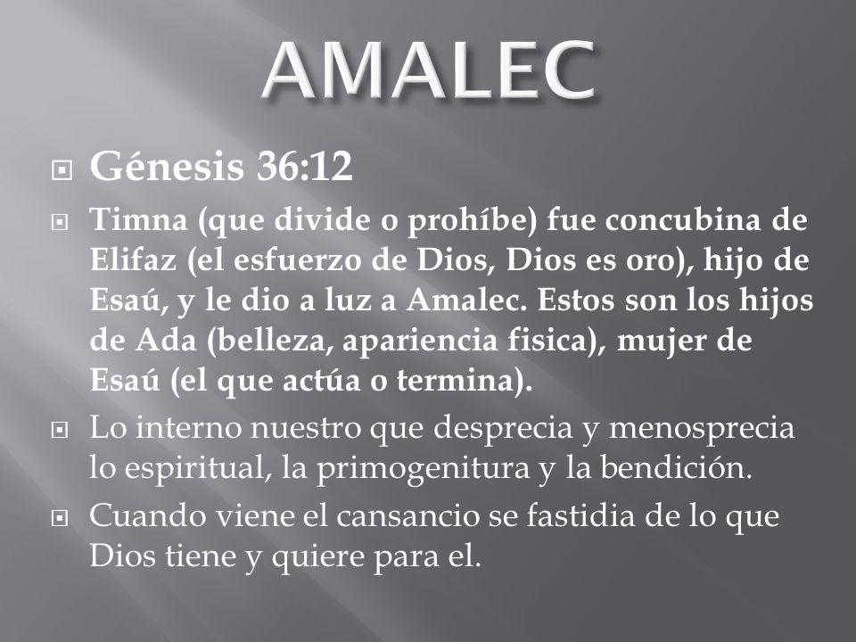 AMALEC Génesis 36:12.