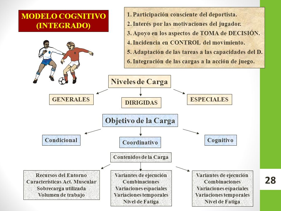 MODELO COGNITIVO (INTEGRADO) Niveles de Carga Objetivo de la Carga